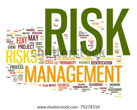 Risk management in word tag cloud - stock photo
