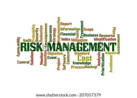 Risk Management Word Cloud on White Background - stock photo