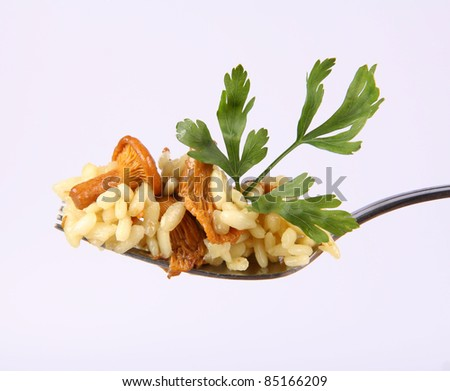 Risotto with mushrooms decorated with parsley on a fork on white background