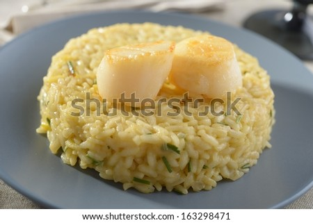 Risotto with scallops on a plate - stock photo