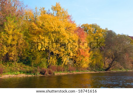 River and autumn trees