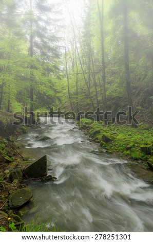 river and mist in the natural park - stock photo