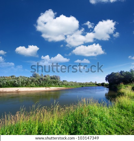 River and spring forest. Nature composition. - stock photo