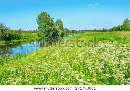 River and the meadow on a sunny summer day. - stock photo