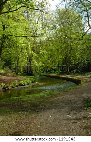 River and woodland path - stock photo