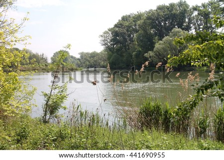 River arms in Bodíky, Danube river, Slovakia - stock photo