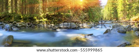 River at sunrise in the Carpathian forest - fast jet of water at slow shutter speeds give a beautiful fairy-tale effect. Ukraine is rich in water resources, in the Carpathian is legendary good ecology
