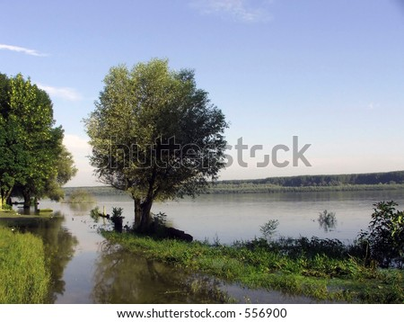River bank in morning