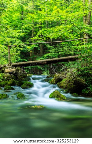 River deep in mountain forest  in Cheile Nerei national park -Romania
