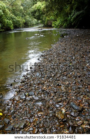 River flowing in tropical forest - stock photo