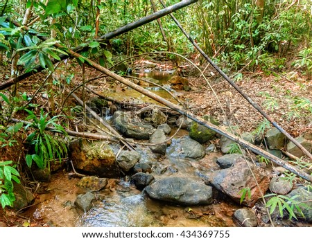 River flowing through rocks and a large stone in jungle of Khao Sok National Park, Surat Thani Province, Thailand.