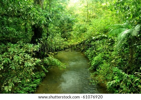 River flows in the jungle of Costa Rica - stock photo