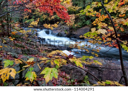 River framed by colorful autumn leaves of many different colors. - stock photo