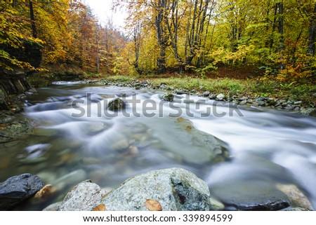 river horizons - stock photo