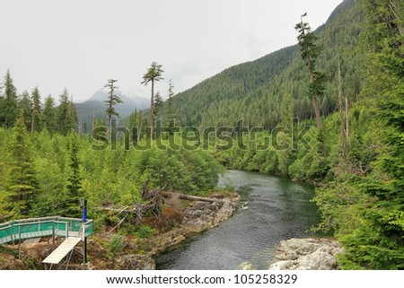 River in a canyon between mountains. Place equipped for zipping .British Columbia. Canada