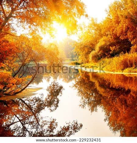 River in a delightful autumn forest at sunny day - stock photo