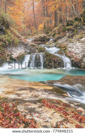river in autumn, colorful forest in autumn, enchanted Forest