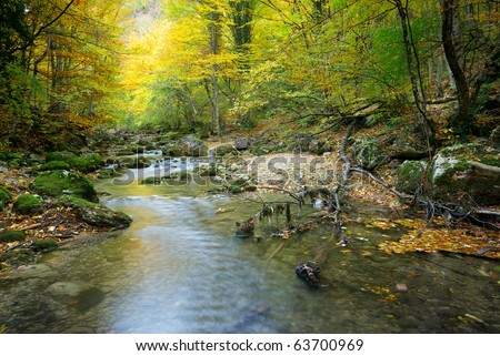River in autumn forest. Nature composition. - stock photo