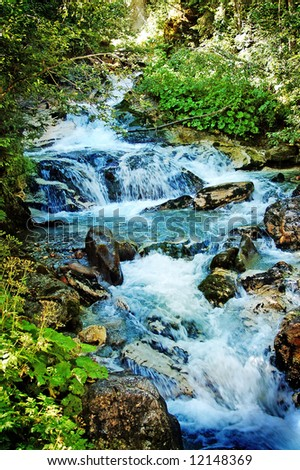 river in forest plantation - stock photo