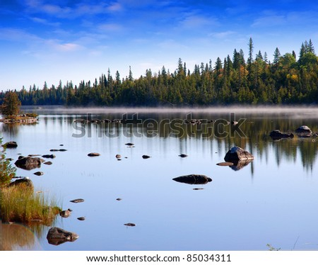 River in forest with stones and fog - stock photo