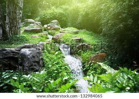 river in jungle - stock photo