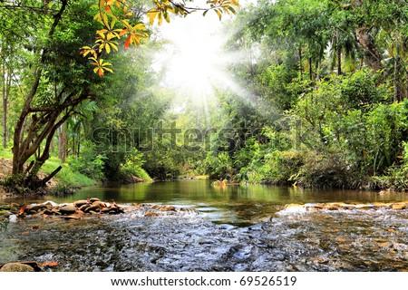 River in jungle, Thailand - stock photo