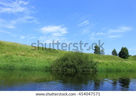 River in summer meadow