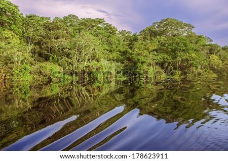 River in the Amazon Rainforest, Peru, South America - stock photo