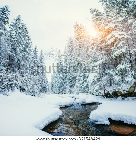 River in the forest in winter - stock photo