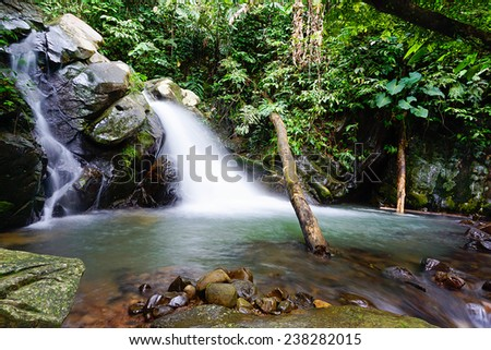 River in the tropical rainforest jungle - stock photo