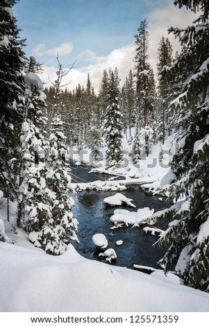 River in winter, Yellowstone National park, wyoming - stock photo