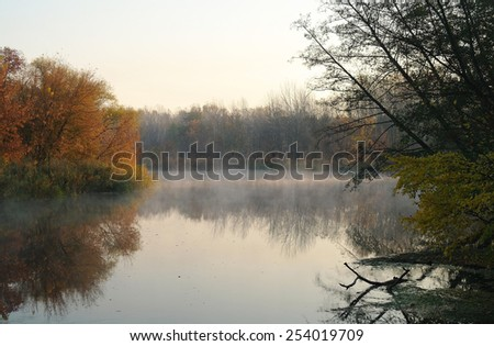 River landscape and autumn wood - stock photo