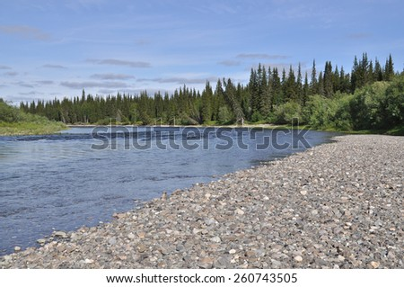 River Lemva, Republic of Komi, Polar Urals, Russia. Northern river clear day. - stock photo