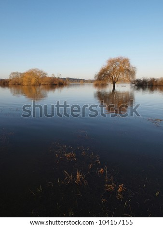 River Maine flood in winter, Angers, France. - stock photo