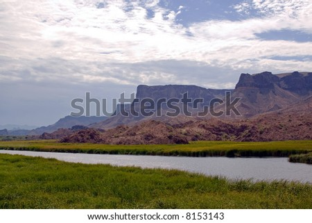River Marsh - stock photo