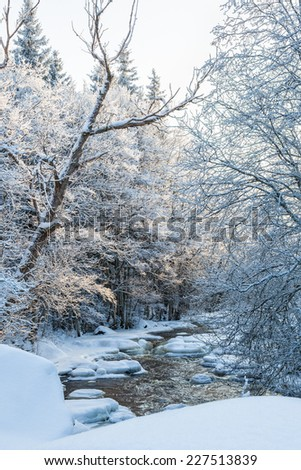 River running through the winter forest - stock photo