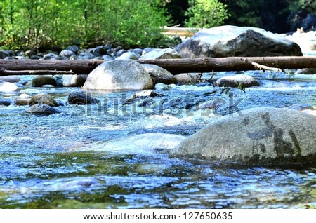 River scenery close up - stock photo