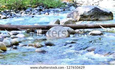 River scenery in the forest - stock photo