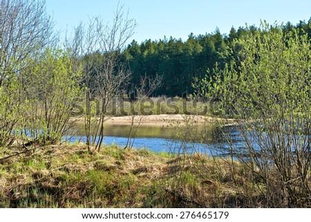 "River spring landscape. Spring nature national Park ""Ryazan Meschera"". - stock photo"