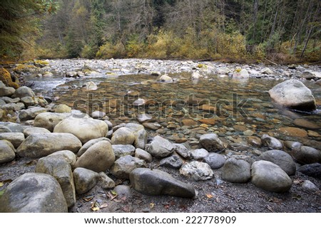 River - stony river with forest scene - stock photo