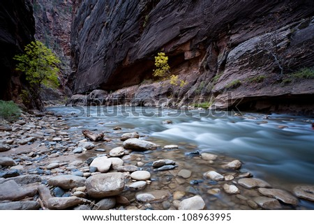 River stream inside the canyon from the Narows, Zion national park - stock photo