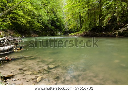 River stream with rocks in forest. - stock photo