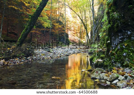 River stream with rocks  in forrest. - stock photo