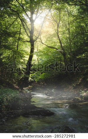 river through green forest in summer - stock photo