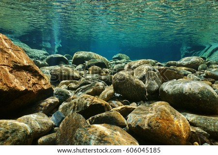 Creek Bed Stock Images... Underwater River Bed