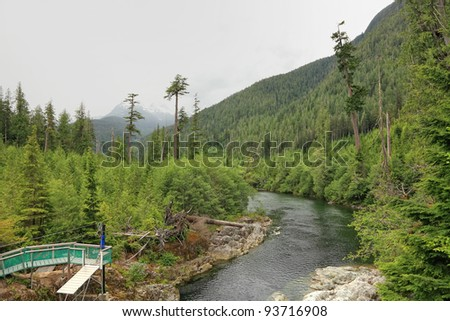 River with a rapid current in a canyon between mountains. Place equipped for zipping (British Columbia. Canada)
