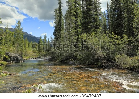 River with a rapid current in a valley between mountains in Banff National Park (Alberta, Canada)