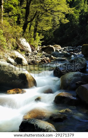 River with boulders in rain forest surrounded by trees and moss. New Zealand - stock photo