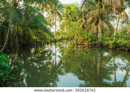 River with the shadow of a tree in the garden. - stock photo