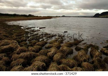 riverside - stock photo